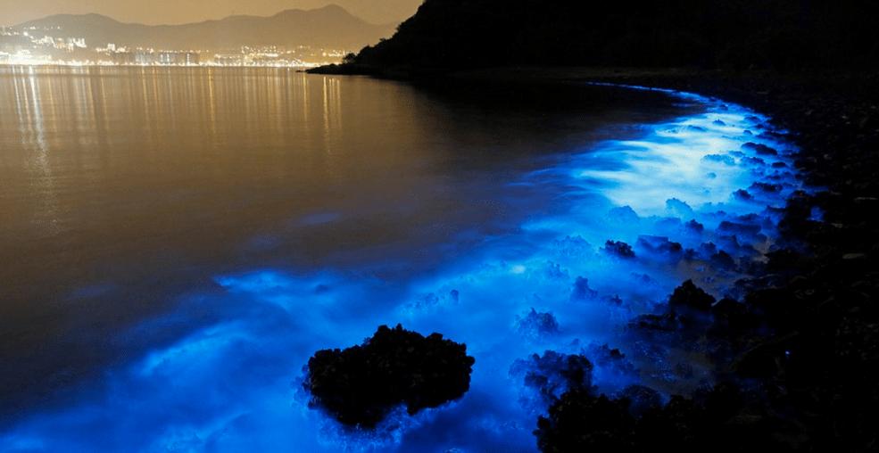 Bioluminescent beaches in India - Andaman