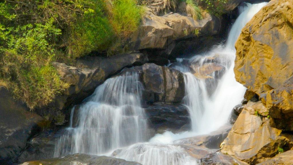 Attukad Waterfalls - Travelpedia
