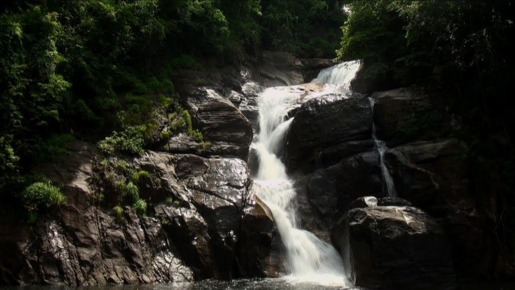 Kallar-Meenmutty Fall